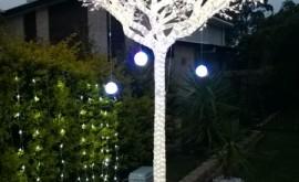 Beautiful light tree